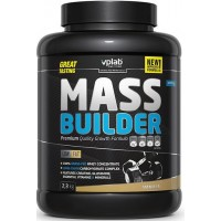 VpLab Mass Builder (2300 гр)
